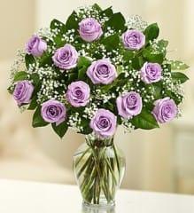Rose Elegance - Dozen Purple