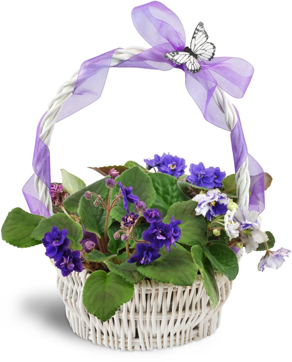 Vibrant Violets Garden Basket