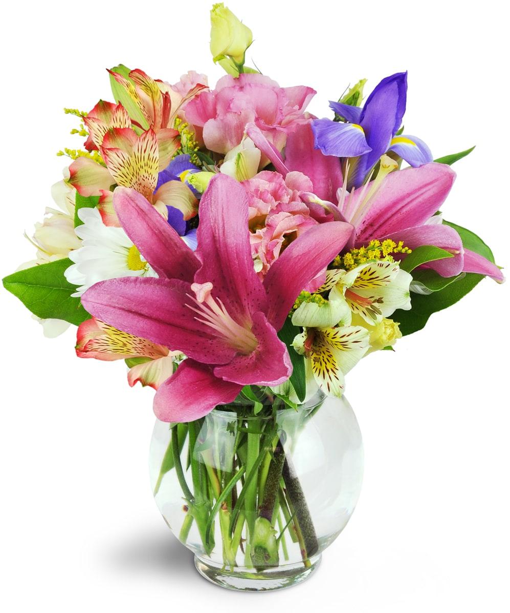 philadelphia florist  free flower delivery in philadelphia  old, Beautiful flower