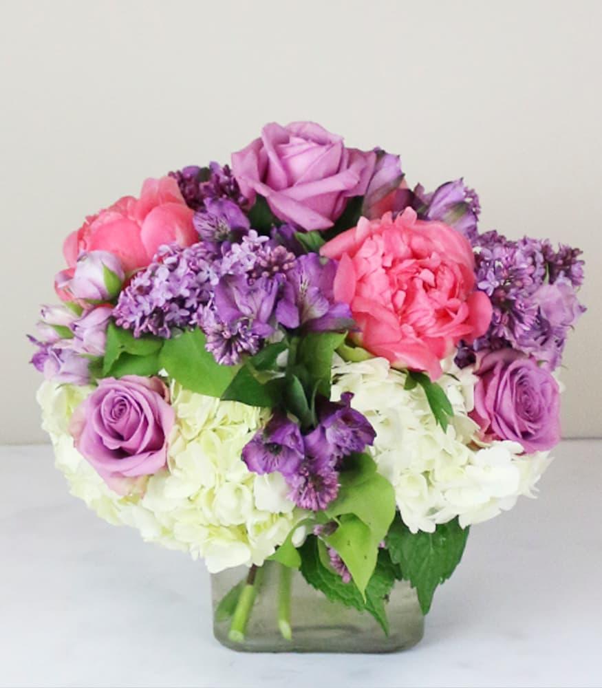 Lush Lavender