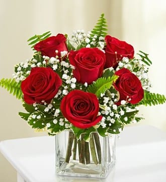Love's Embrace - 6 Red Roses
