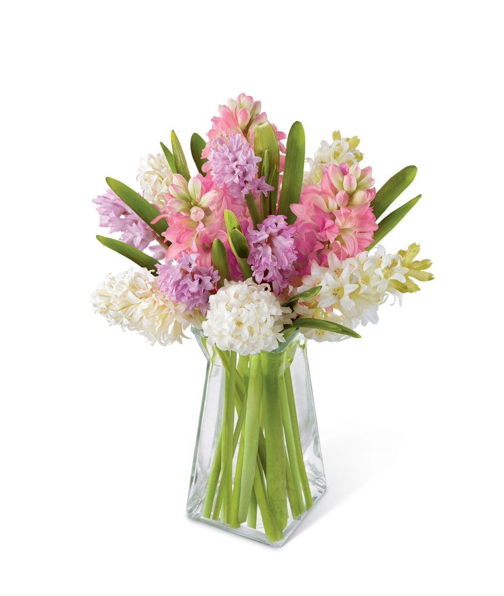 The ftd pure perfection boonton nj florist the ftd pure perfection hyacinth bouquet dhlflorist Choice Image