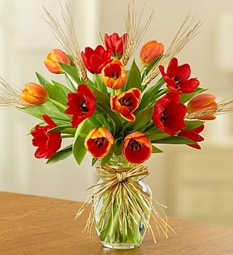 Timeless Tulips™ for Fall