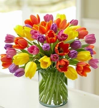 Enchanting Tulip Bouquet