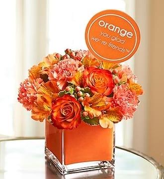 Orange You Glad We're Friends™