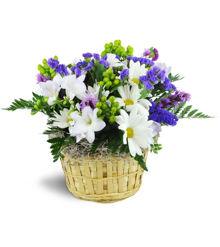 Sweet Freesia Basket™