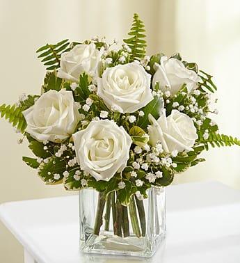 Love's Embrace Roses- White