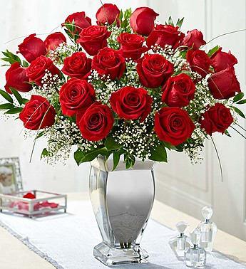 Premium Long Stem Red Roses in Silver Vase