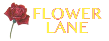Flower Lane - Flower Delivery in Pomona, CA