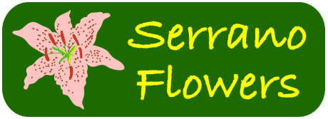 Serrano Flowers - Flower Delivery in Riverside, CA