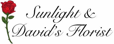 Sunlight and David