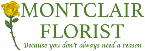 MontclairFlorist.net - Flower Delivery in Belleville, NJ
