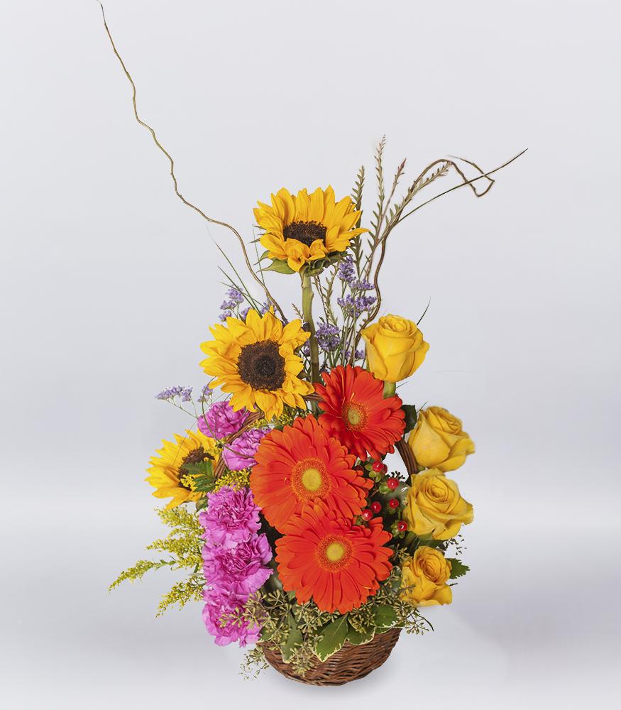 Basket Of Sunshine Spring Tx Florist