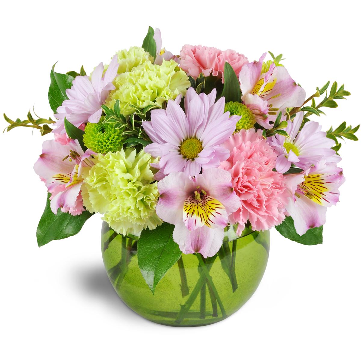 Smile a mile daisy vase london on florist izmirmasajfo