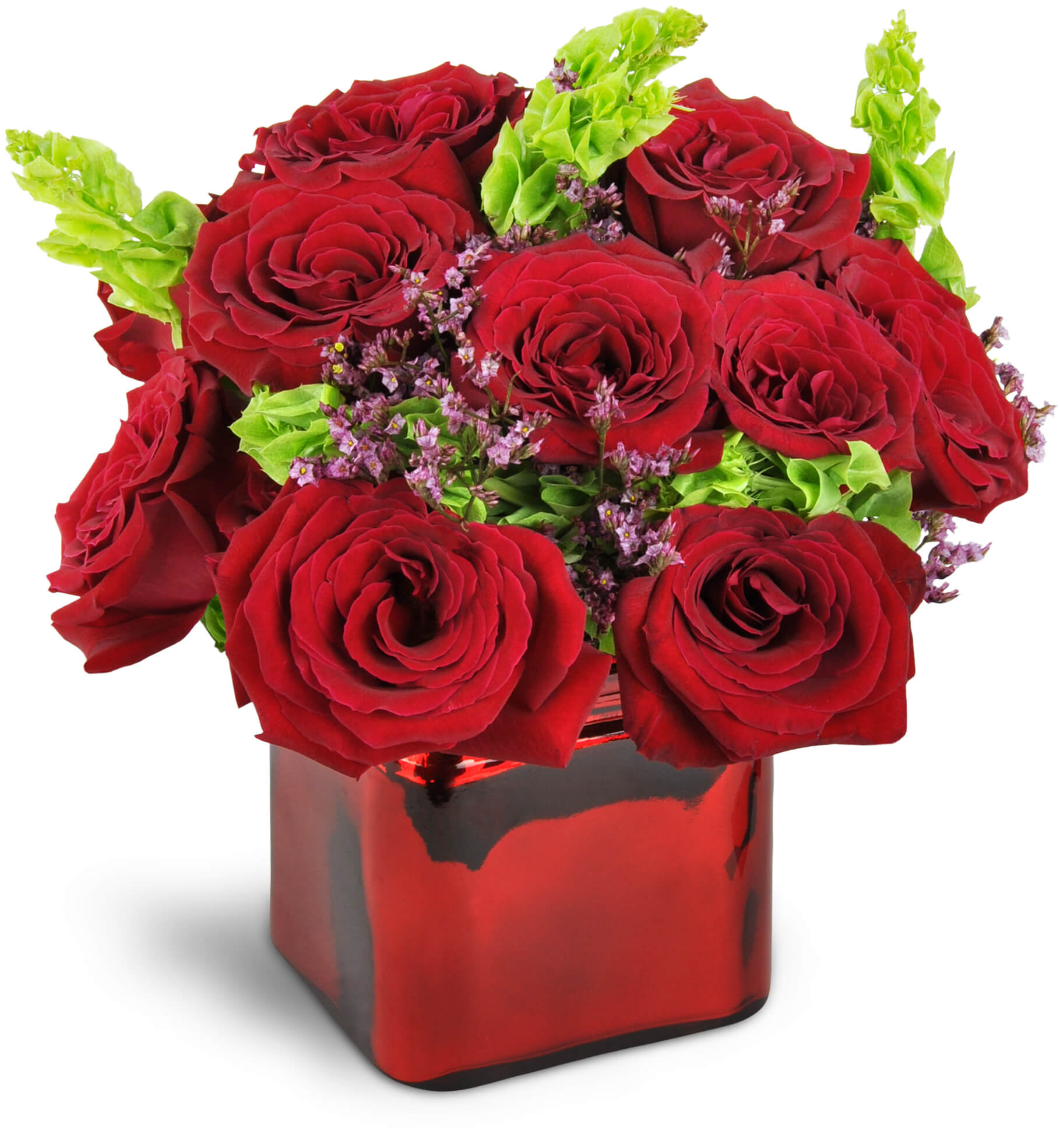 Two Dozen Red Roses Bronx Ny Florist