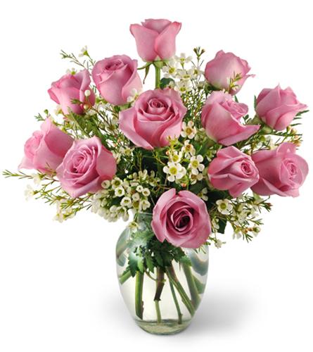 Dozen Lavender Roses Swedesboro Nj Florist