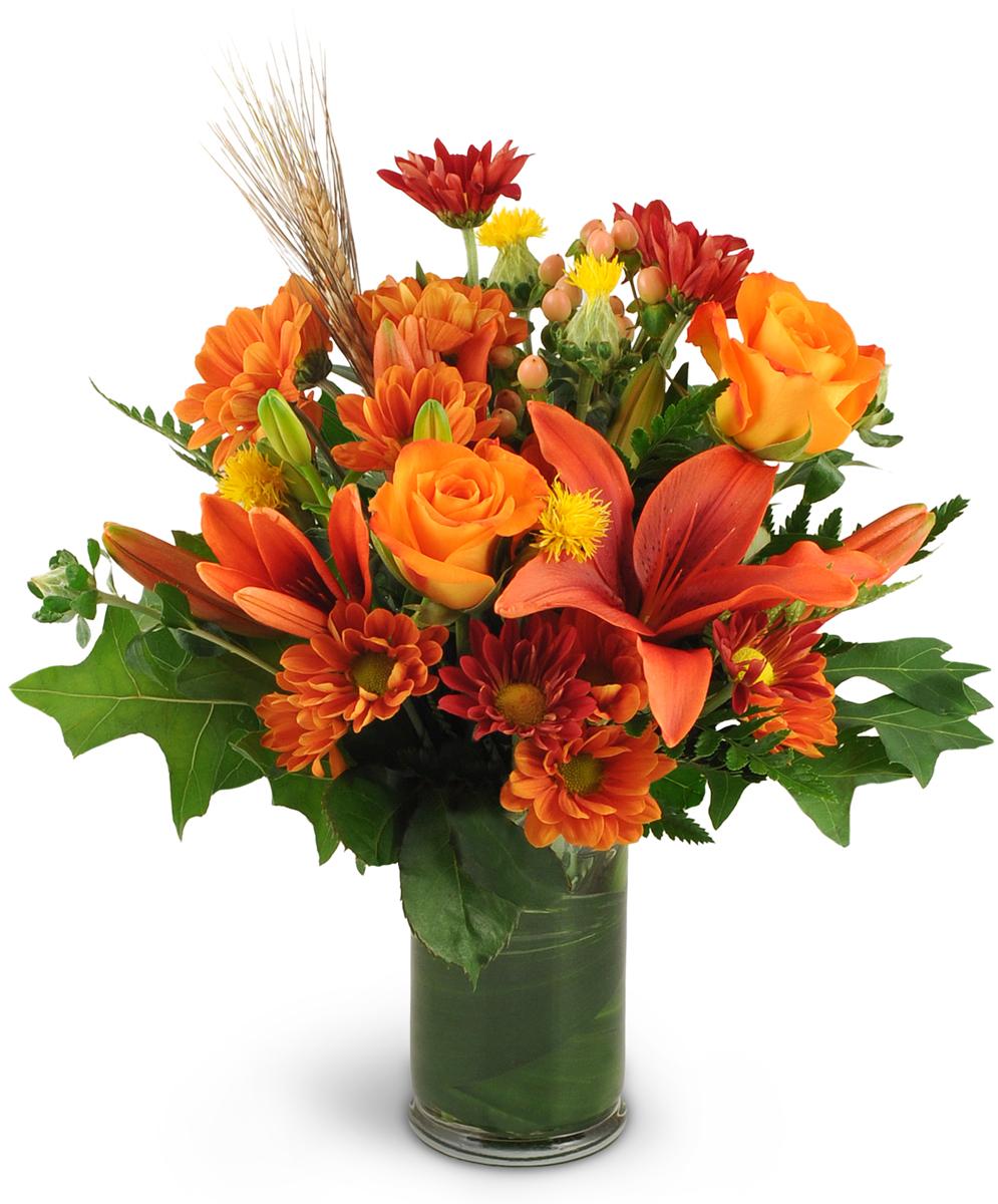 Autumn Awakening Conway Sc Florist