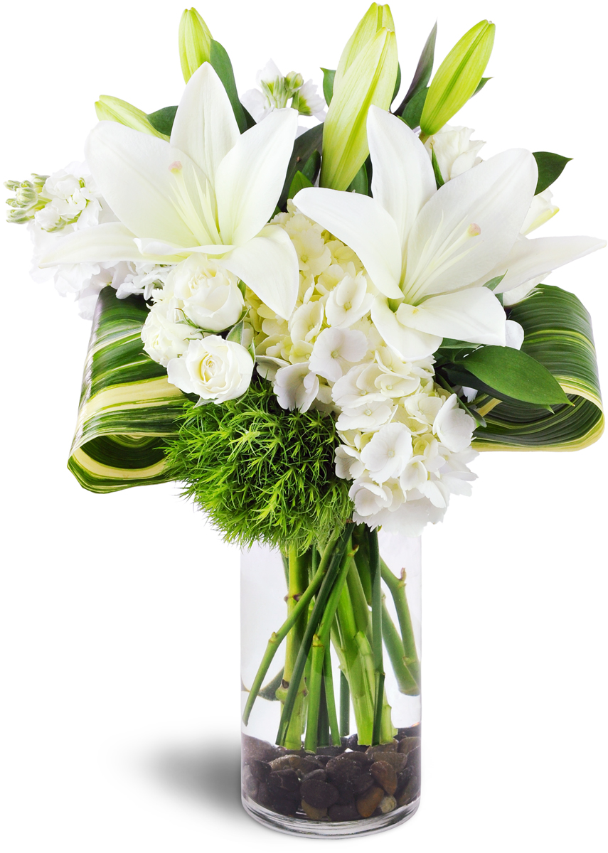 Peace Lily Conway Sc Florist