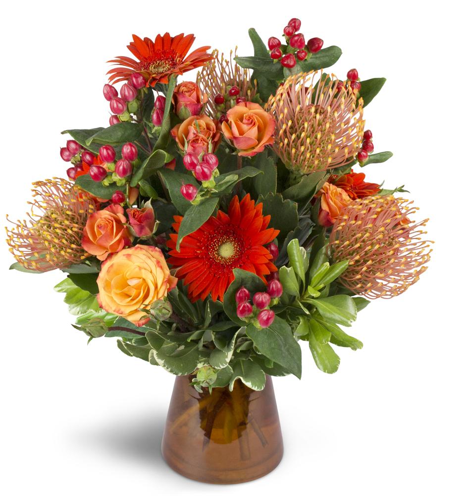 Energetic Orange St Ansgar Ia Florist
