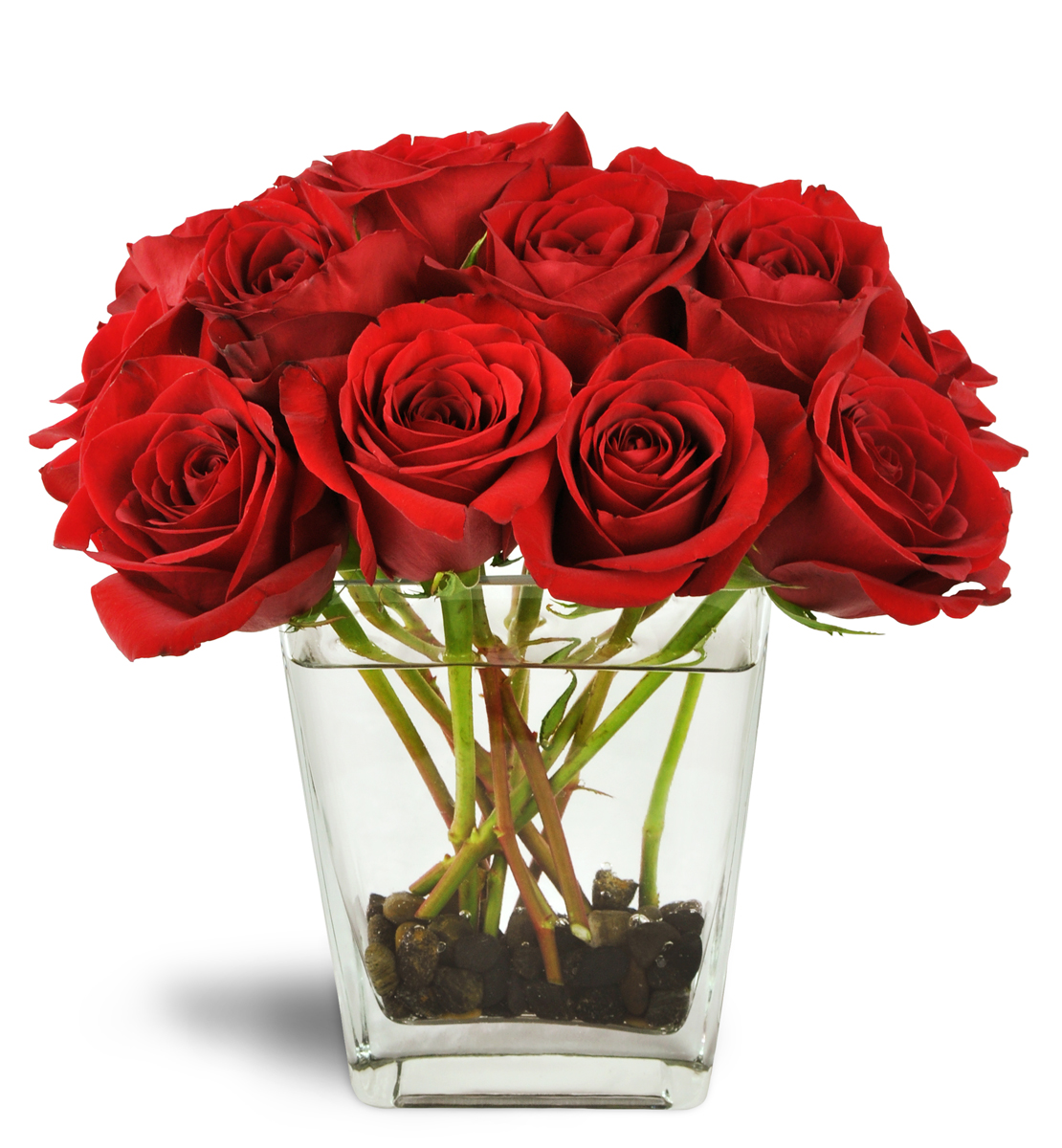 Six Red Roses Moline Il Florist