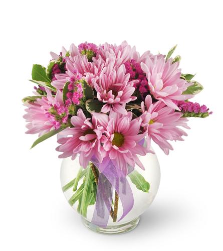 Florists Choice Daily Deal Spring Lake Nc Florist