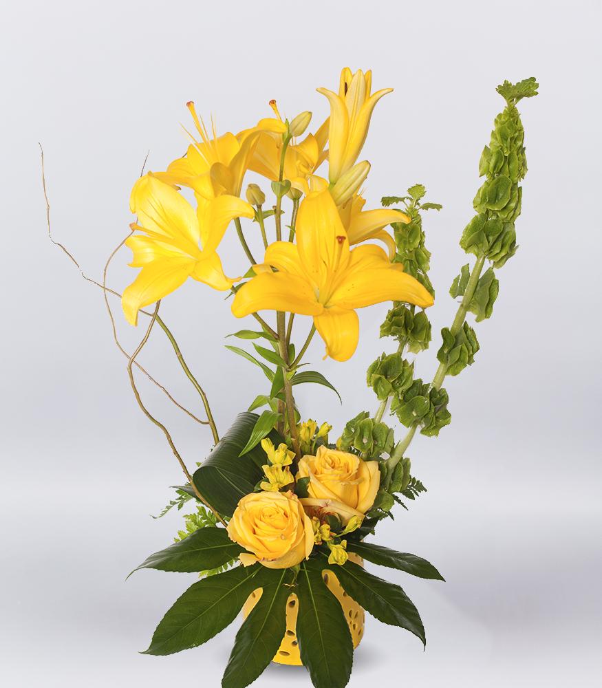 Yellow Sunrise Spring Tx Florist