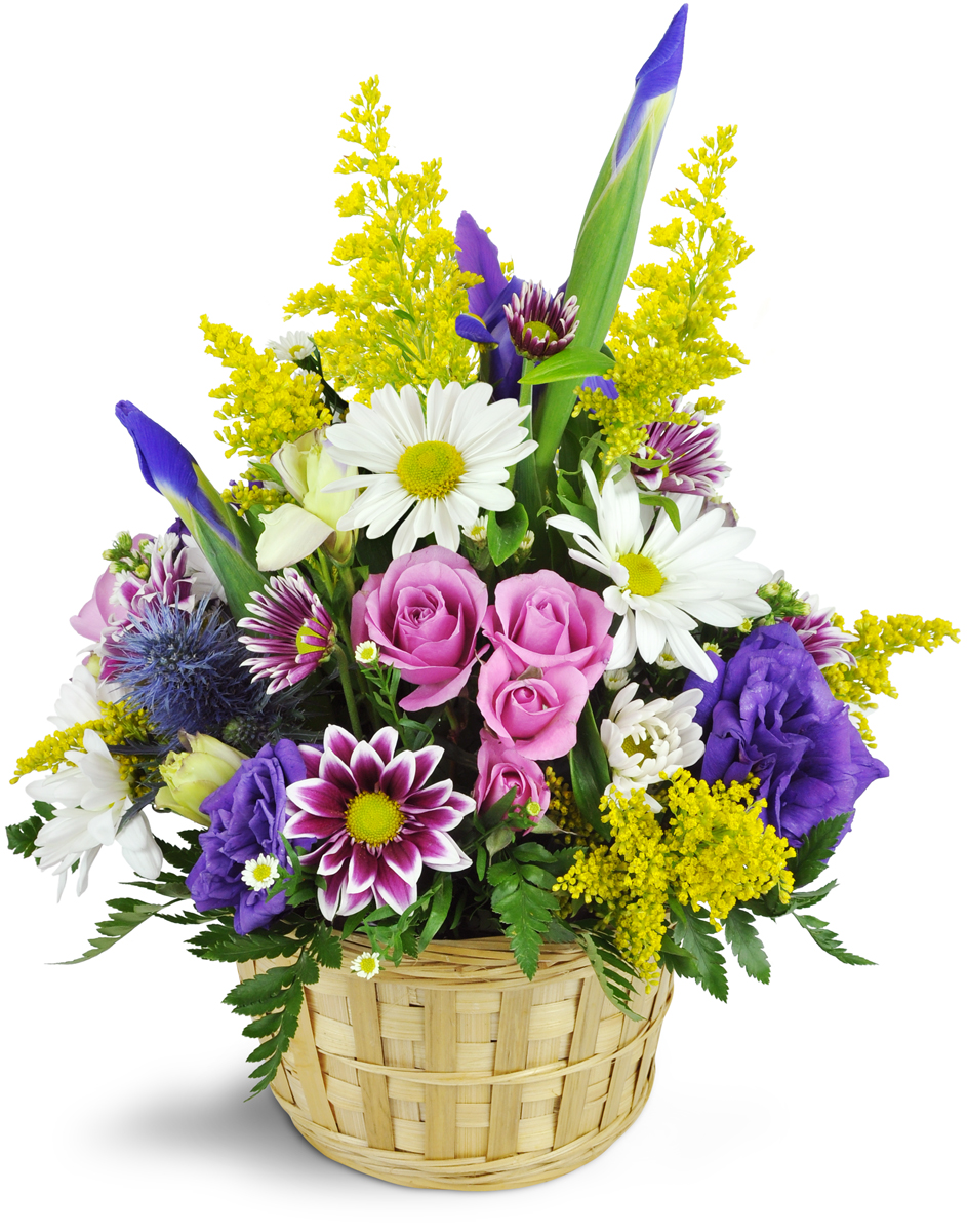 Serene wreath yonkers ny florist izmirmasajfo