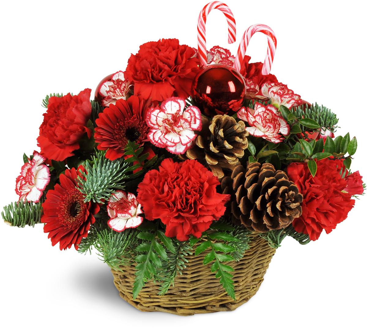 Basket Full Of Christmastime Spring Lake Nc Florist