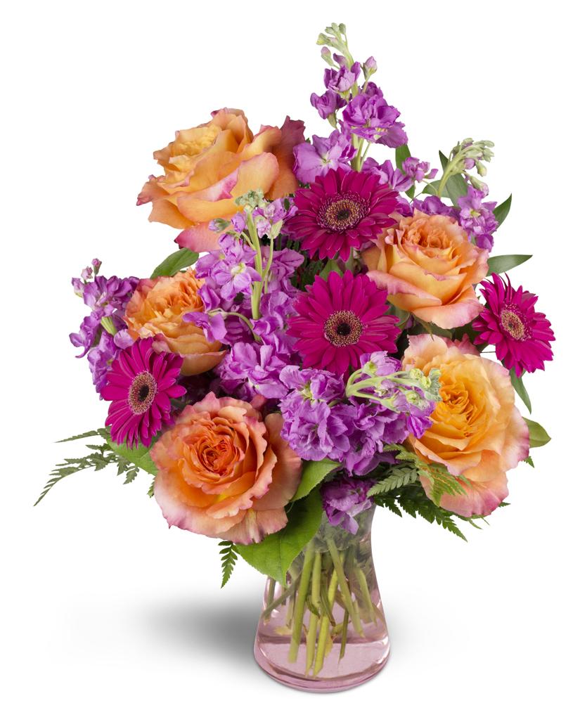 Invigorate moline il florist izmirmasajfo