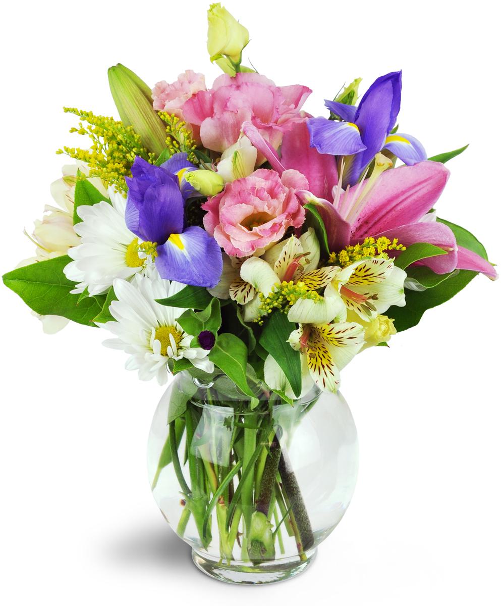 Sweet Symphony Conway Sc Florist