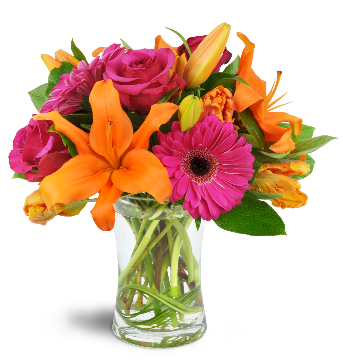 Florist\'s Choice Daily Deal - Kitchener, ON Florist