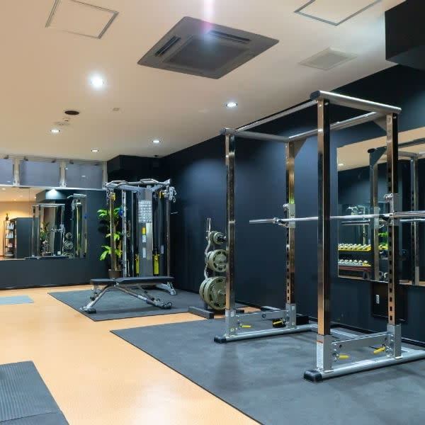 Stylish Aging Private Gym