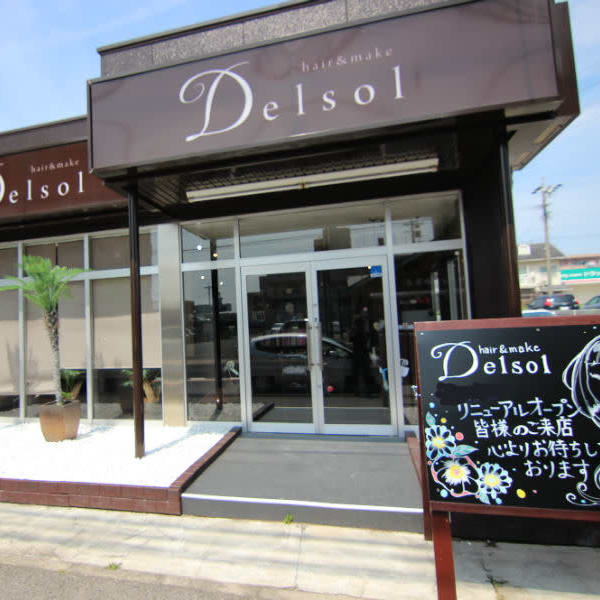 Delsol