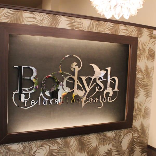 Bodysh 西新宿小滝橋通り店
