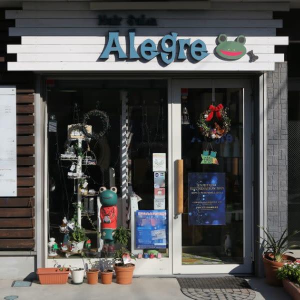 Hair Salon Alegre