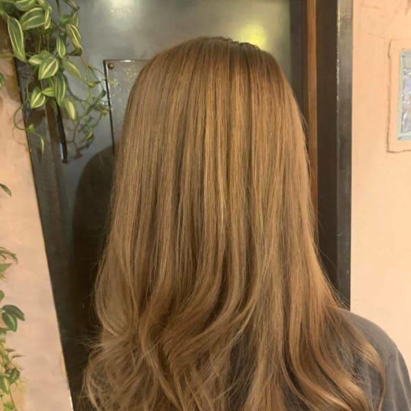 Hair Design Popolarita