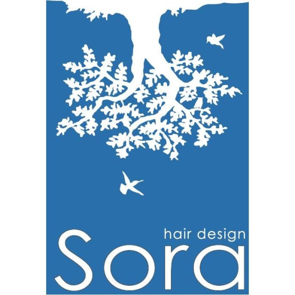 Sora hairdesign