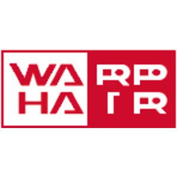 WARP HAIR