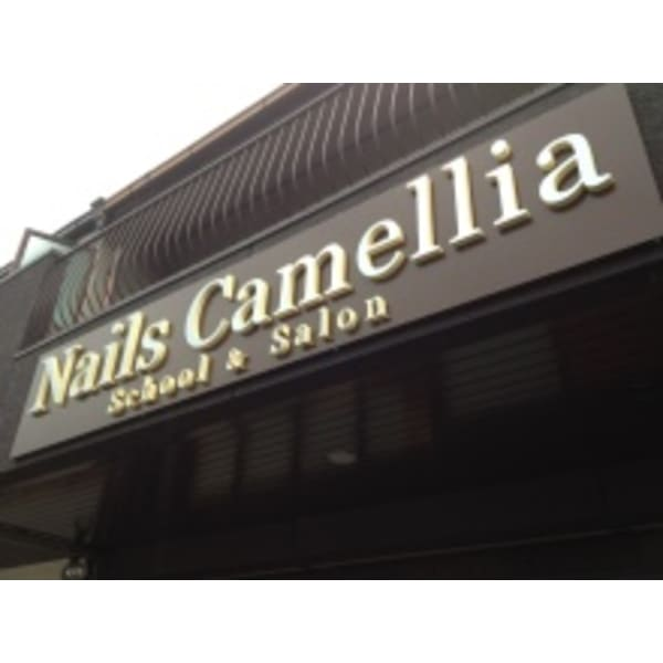 Nails Camellia