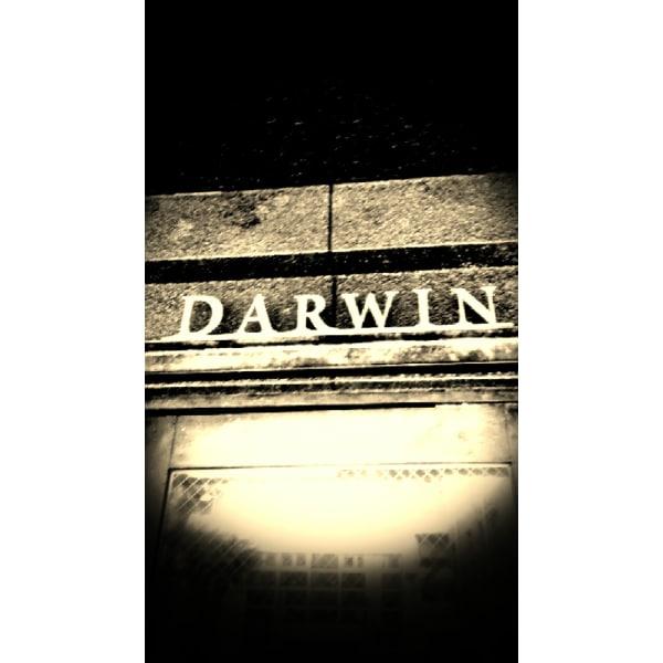 理容室 DARWIN 国分寺