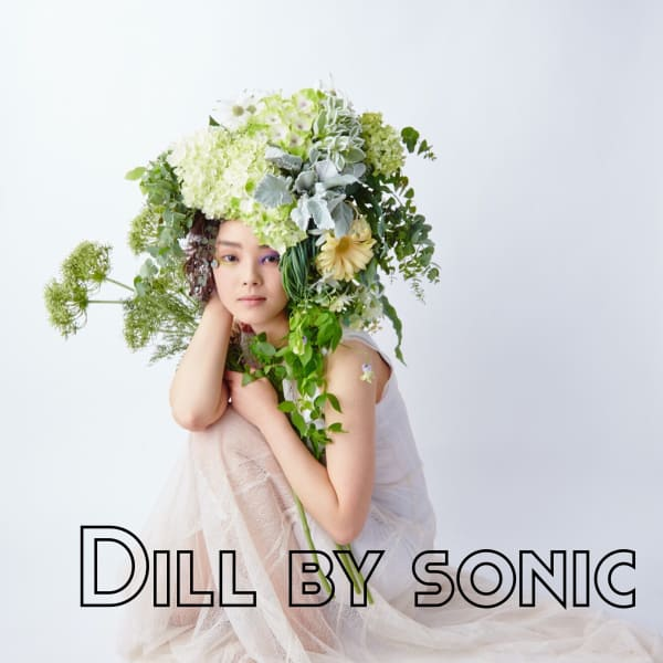 Dill by sonic hair group