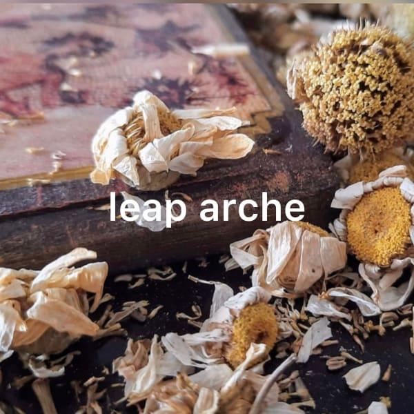 LEAP ARCHE