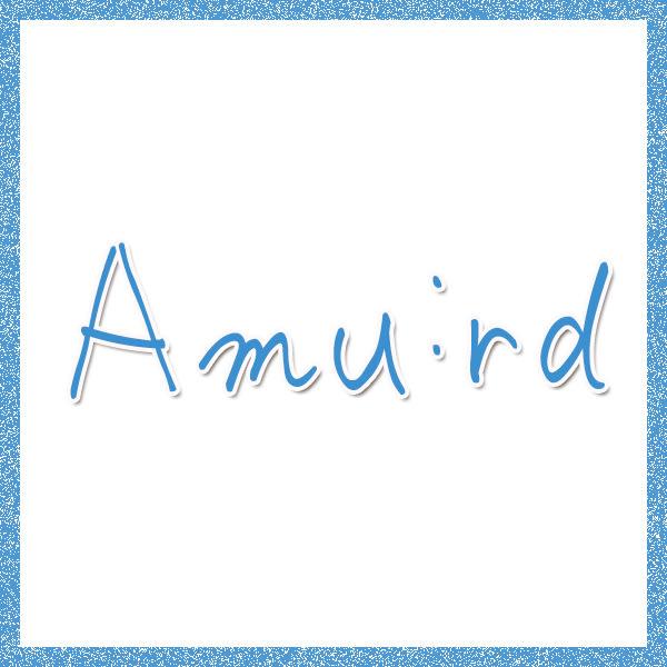 Amu:rdフィールズ南柏