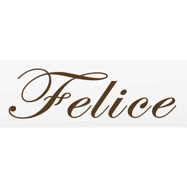 エステサロン Felice