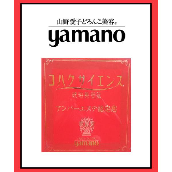 山野愛子どろんこ美容 クレスティサロン 仙台店