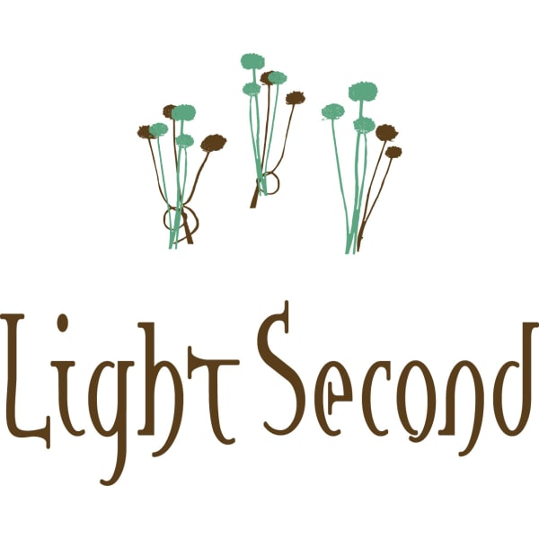 Light Second