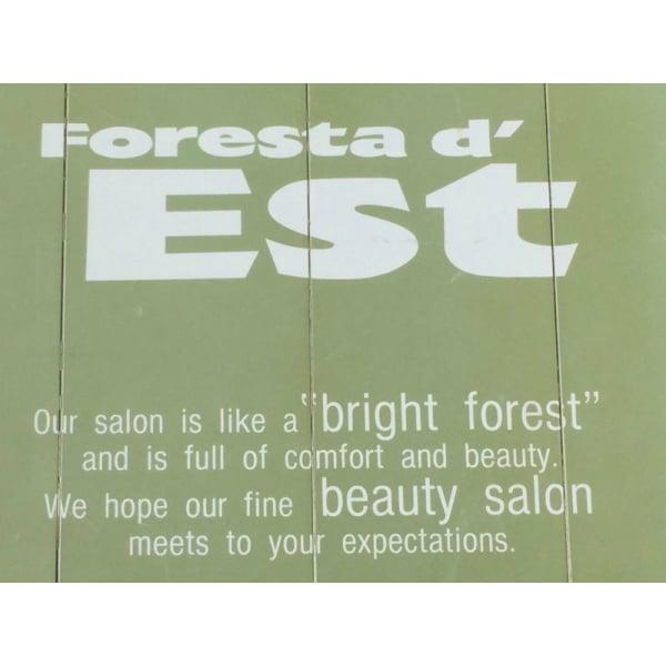 Foresta d' Est