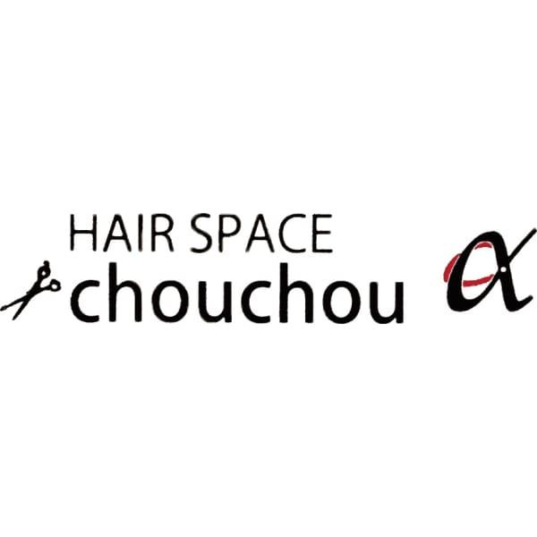 HAIR SPACE chouchou α