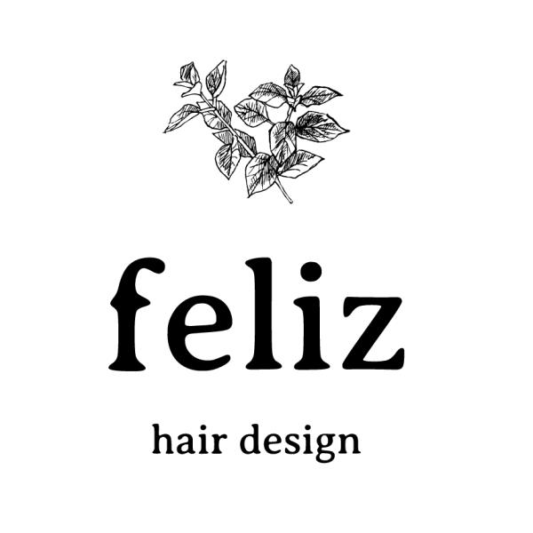 hairdesign feliz