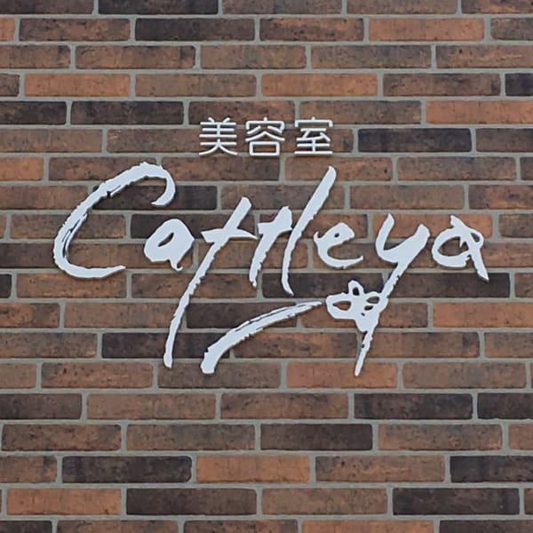 美容室 Cattleya